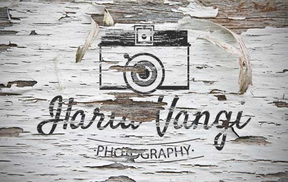 Logo Ilaria Vangi Photography Vintage